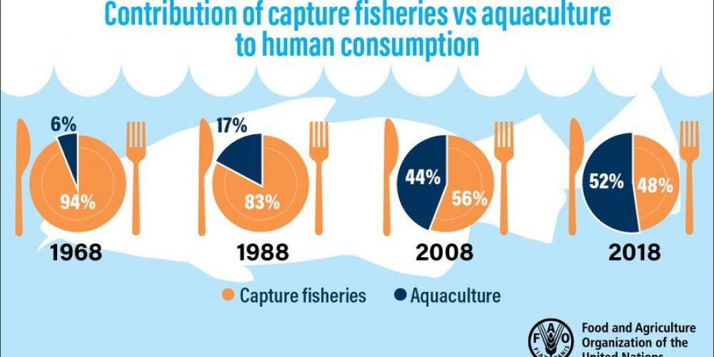 AquacultureSOFIAJune2020ReportGraphic