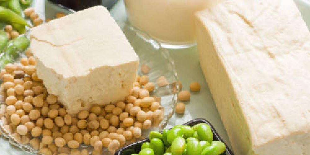 Soy Products. Soy Bean Food and Drink Products Photograph with Several Elements including loose bean,tofu, and soy milk. Full block of tofu.  Half block of tofu sitting on plate of loose soy beans. Green beans in black square bowl. Glass filled with soy milk.